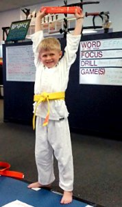 Vision Martial Arts Center Kids Karate Photo 4